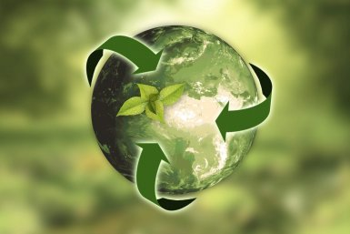 7 Simple but Free Sustainability Tips for Eco Living